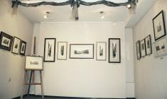 """Уго Баракко. Фрагмент экспозиции в галерее """"АРКА"""". 2011"""